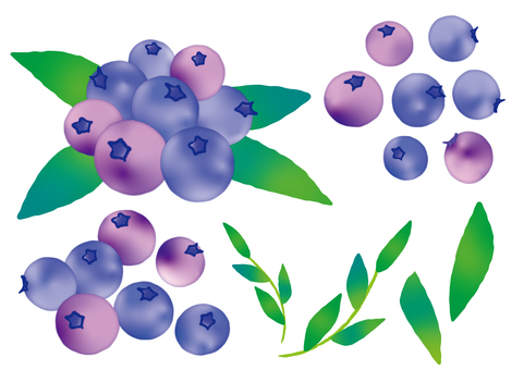 Blueberry Material Set Purple Mix