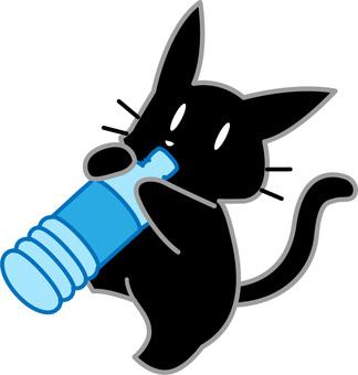 Black cat drinking a drink in a plastic bottle