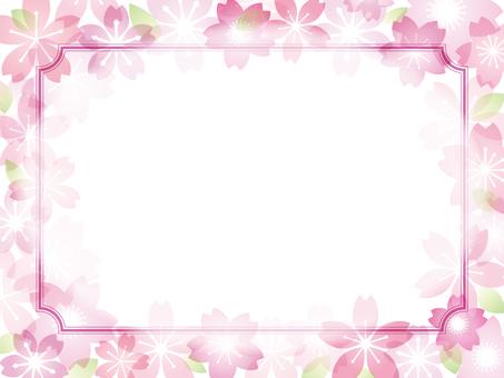 Cherry blossom image 032