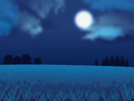 Night moon and grassy background