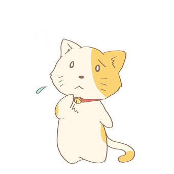 Troubled cat