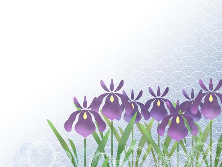 花フレーム (花菖蒲) 13