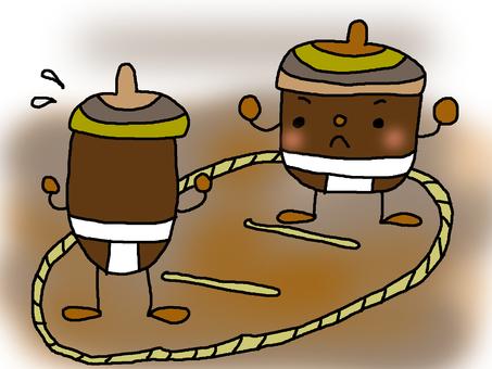 Acorn sumo