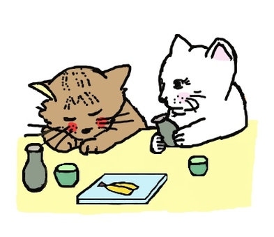 Cat drinking party