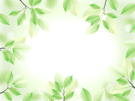 New green frame 2