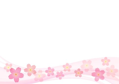 Cherry blossoms 219