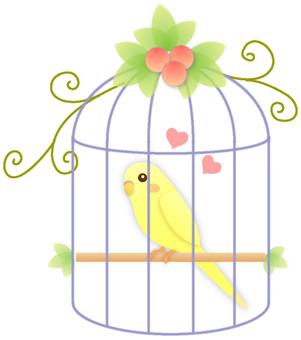Yellow parakeet in the basket