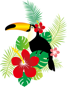 Toucan and Monstera's Tropical Illustration