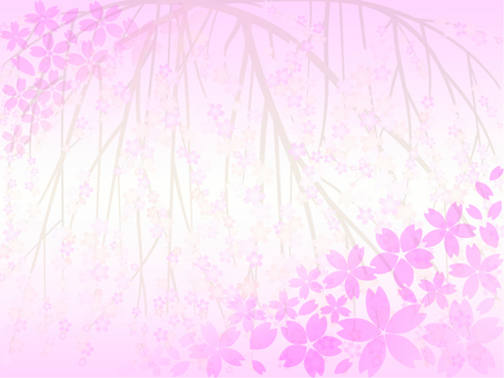 Cherry blossom background 51
