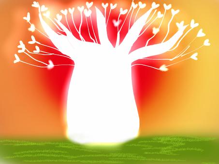 Baobab tree and sun