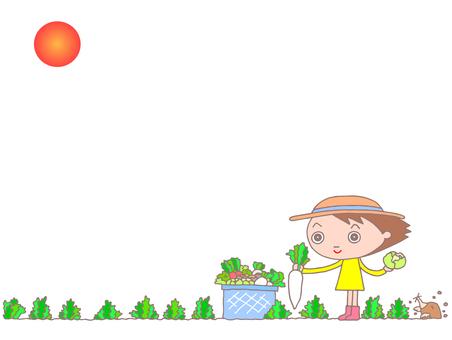 Harvesting vegetables. 2