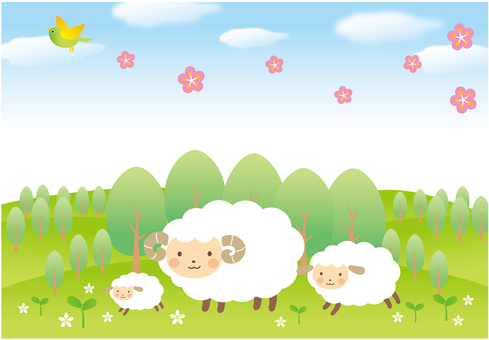 Spring landscape of the sheep family