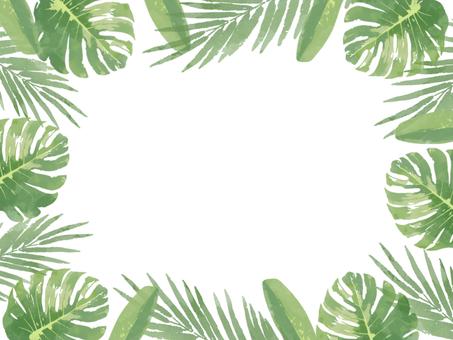 Tropical green frame