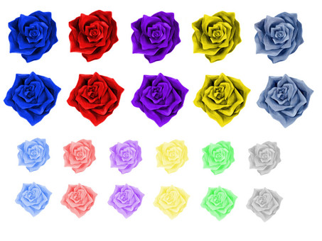 Various roses