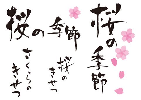 Cherry blossom season set