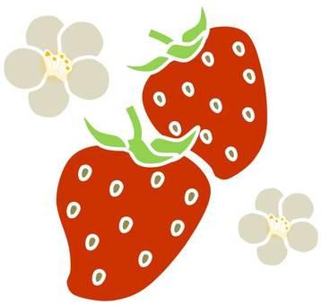 Strawberry 06