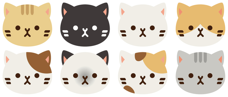 A cat assortment
