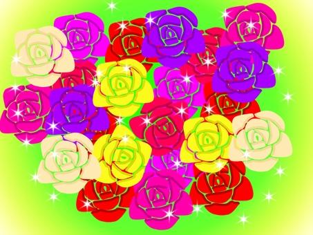 玫瑰的玫瑰