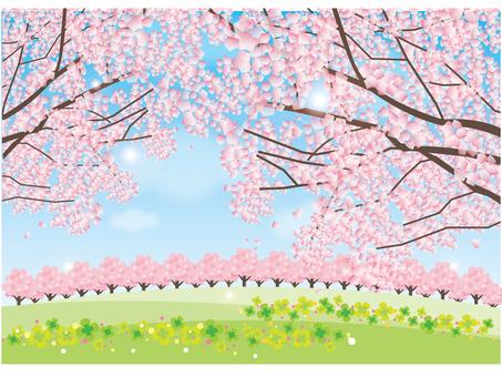 Sakura no Oka 2 (Completed)