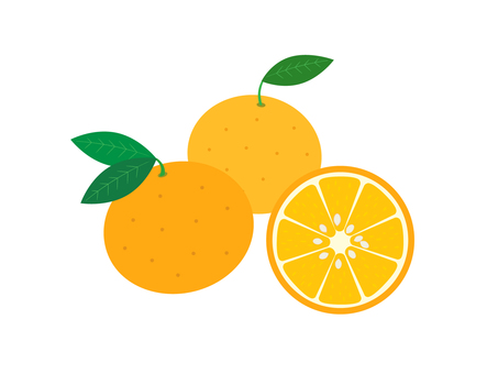 Summer mandarin orange illustration material