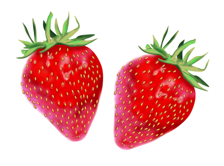 Real Strawberry Twin