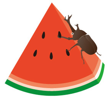 Watermelon and beetle