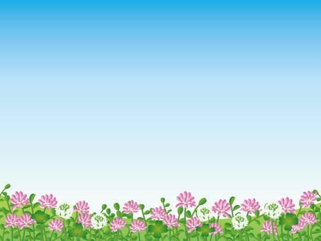 Blue sky frame of brick and white clover