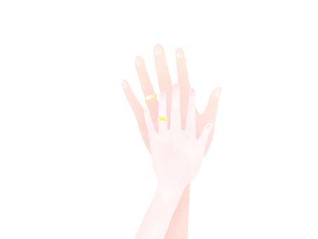 Hands men and women wedding rings