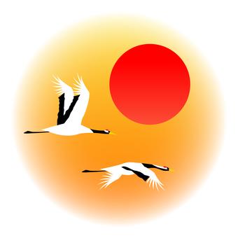 Cranberry crane flight sunrise