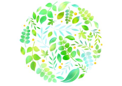 Fresh green material 84