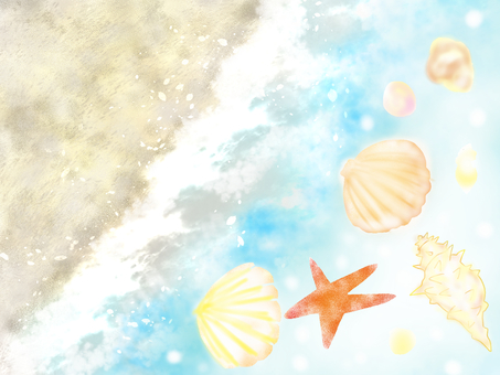 Seashell and sea