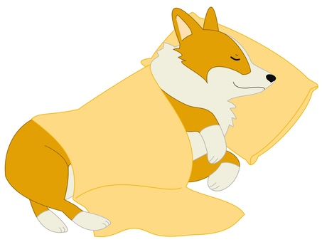 Corgi bedding yellow