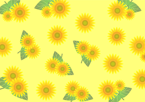 Sunflower sunflower background material