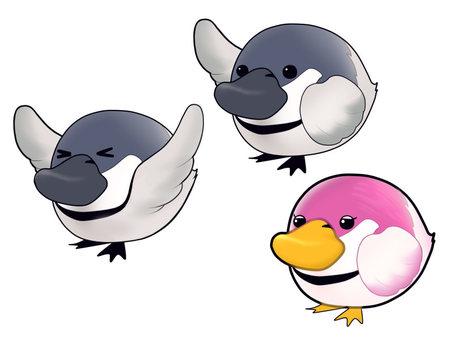 귀여운 꼬박 새