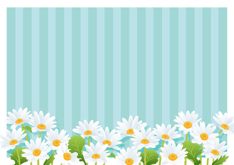 Daisy / Hinagiku (Green)
