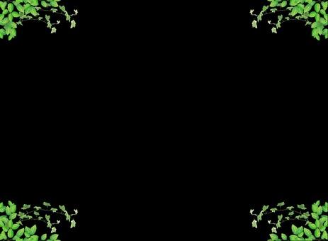 블랙 보드 (잎 & 아이비) 상하