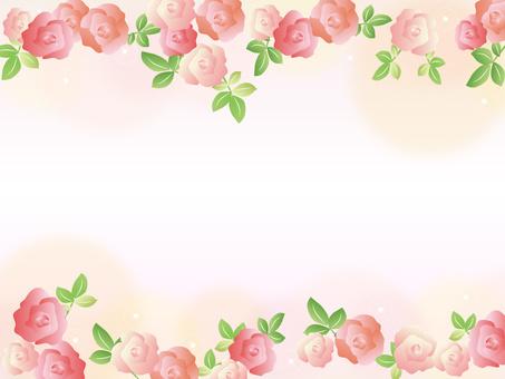 장미 프레임 꽃