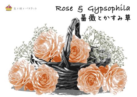 Flowers green basket rose pink rose C