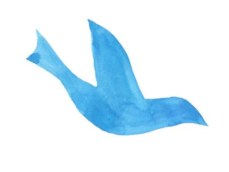 [Watercolor painting] blue bird illustration