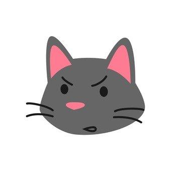 고양이 - 성난 고양이 얼굴