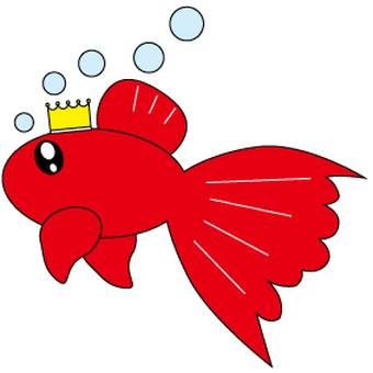 Goldfish 姫