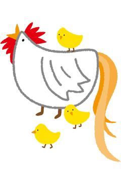 Chicken and child
