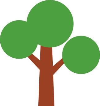 나무 소재 5