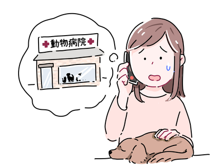 Woman 2 calling a veterinary clinic