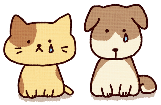 Sad dog and cat