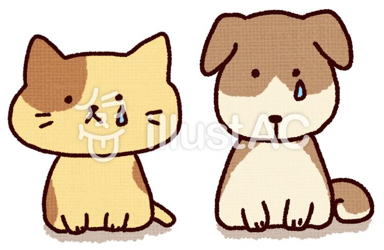 悲しそうな犬と猫イラスト No 1071832無料イラストならイラストac