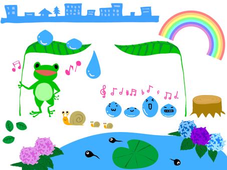 Cut rainy season frog