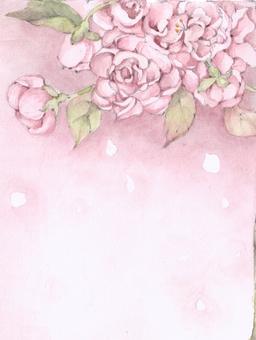 봄의 벚꽃 만개, 꽃 보라