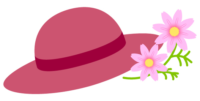 Cosmos and hat 2