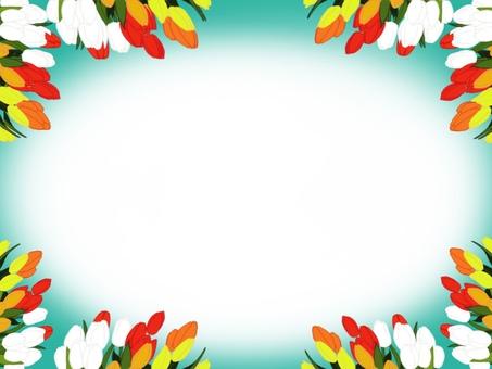 鬱金香框架